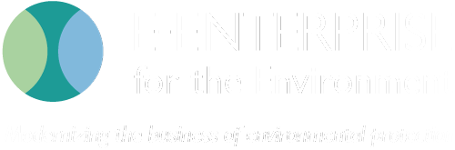 E-Enterprise logo